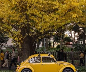 autumn, yellow, and car image