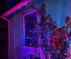 pink, neon, and blue image