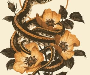 flowers, slytherin, and hufflepuff image