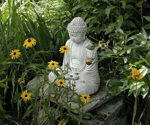 flowers, Buddha, and garden image