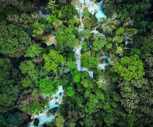 aerial photography, jungle, and landscape image