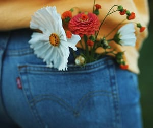 flowers, jeans, and photography image