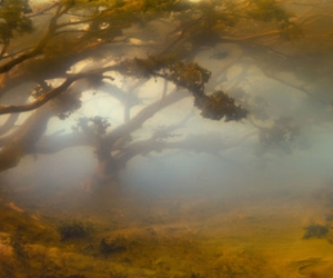 Kim Keever, landscape, and photography image