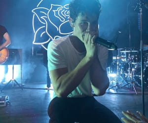 shawn mendes, celebrity, and singer image