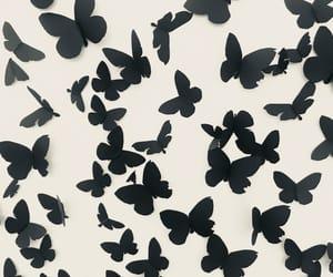 arte, black, and mariposas image