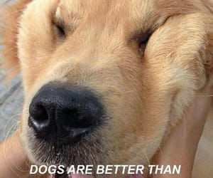 dog, wallpaper, and love image