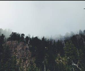 cloudy, fresh, and nature image