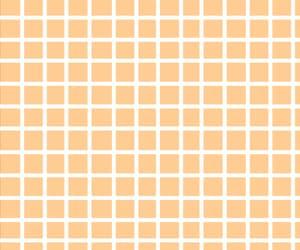 lines, scripes, and orange image