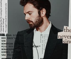 bucky, handsome, and header image