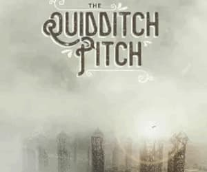 gif, quidditch, and harry potter image