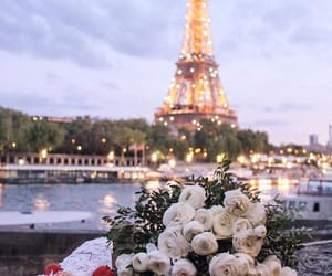 france, roses, and flowers image