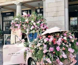 flowers, jo malone, and traveling image