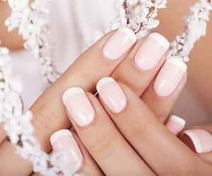 hands, white, and french manicure image