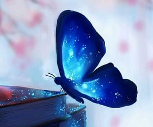 butterfly, blue, and book image