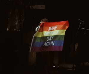 Harry Styles and make america gay again image