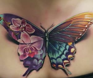 butterfly, tattoo, and beautiful image