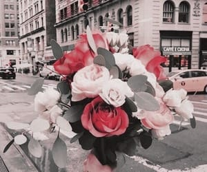 flowers, city, and rose image