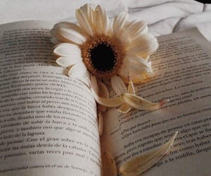 books, ideas, and flower image