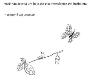 borboleta, the sun and her flowers, and com image