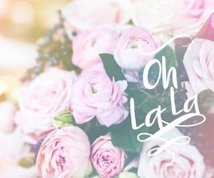 flower, wallpaper, and oh la la image