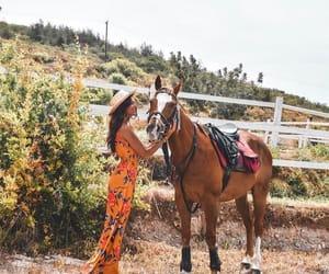 fashion, girl, and horse image