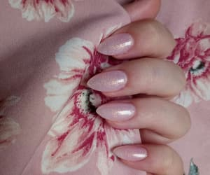 beauty, pink, and pinky image