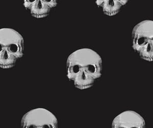 skull, wallpaper, and black image