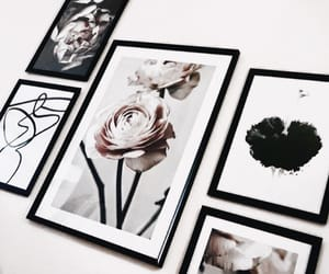 black, design, and flowers image