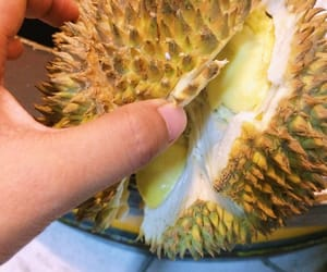 beautiful, durian, and fit image