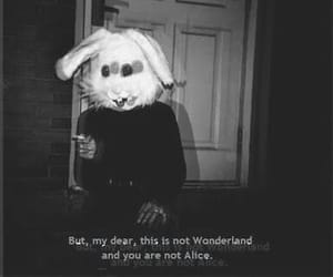 wonderland, grunge, and alice image