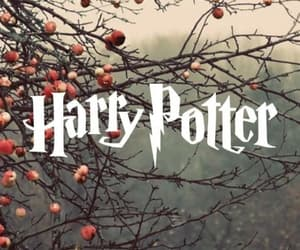 harrypotter, wallpaper, and hp image