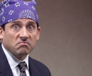 the office, michael scott, and prison mike image