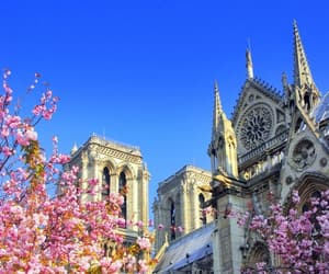 paris, cathedral norte dame, and france. flowers image