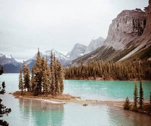 mountains, trees, and nature image