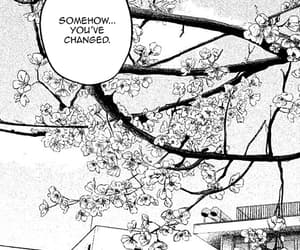 cap, manga, and hare kon image