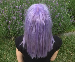 pink hair, purple hair, and blue hair image