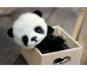 panda, باندا, and ﺭﻣﺰﻳﺎﺕ image
