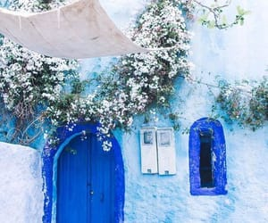 blue, flowers, and morocco image
