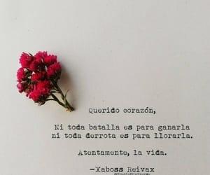 flores, frases en español, and letras image