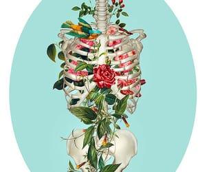 art, flowers, and bones image