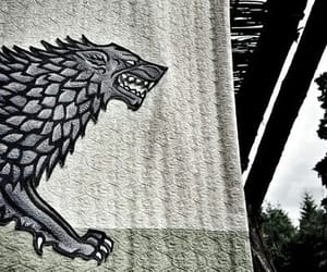 wolf and house stark image