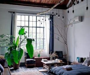 bohemian, plants, and room image