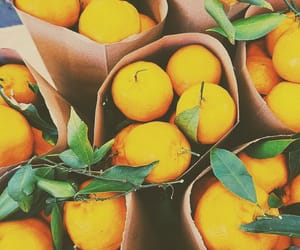 aesthetic, food, and oranges image