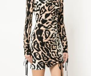 animal print and leapard print image