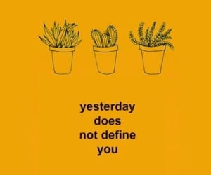 yellow, quotes, and cactus image