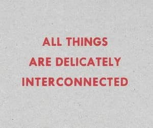 jenny holzer, quote, and interconnected image