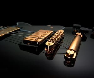 dose, life, and guiter image