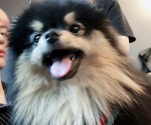 bts, yeontan, and taehyung image