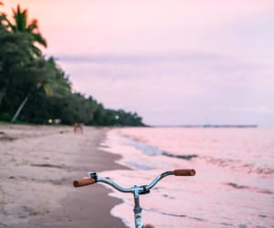 bicycle, paradise, and rumina posts image