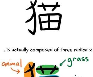 japanese, learn japanese, and kanji image
